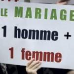 Мы против закона разрешающего однополые браки! фото с митинга в Париже 17.11.12